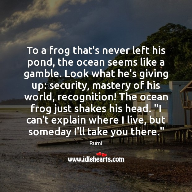 To a frog that's never left his pond, the ocean seems like Image