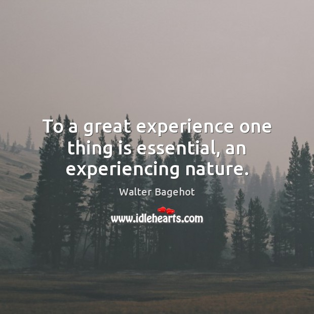 Image, To a great experience one thing is essential, an experiencing nature.