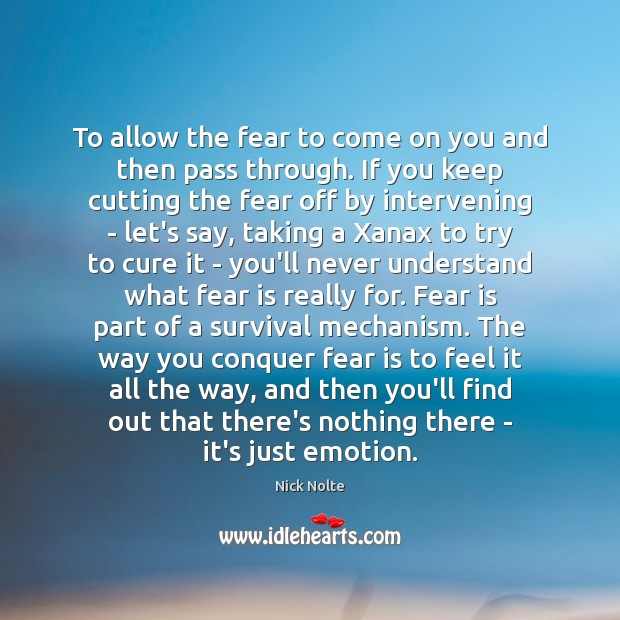 To allow the fear to come on you and then pass through. Nick Nolte Picture Quote