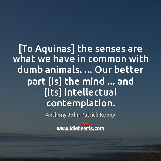 [To Aquinas] the senses are what we have in common with dumb Image