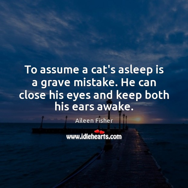 Image, To assume a cat's asleep is a grave mistake. He can close