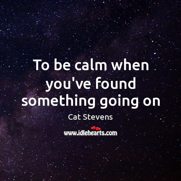 To be calm when you've found something going on Image