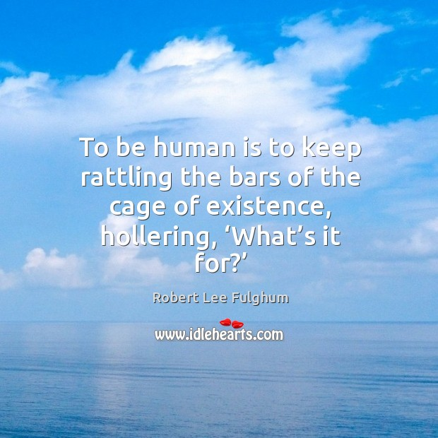 To be human is to keep rattling the bars of the cage of existence, hollering, 'what's it for?' Image
