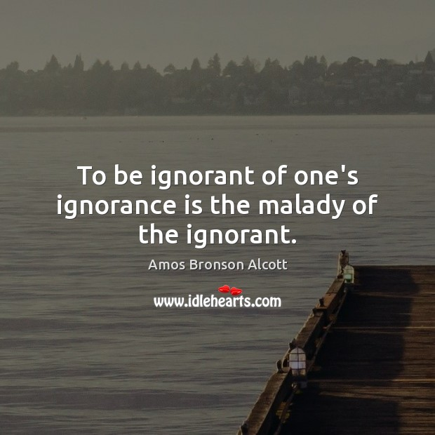 Image, To be ignorant of one's ignorance is the malady of the ignorant.