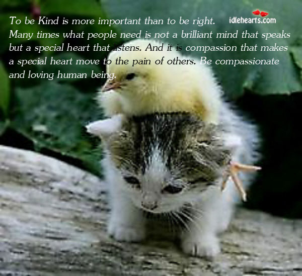 To Be Kind Is More Important Than To Be Right. Many Times…