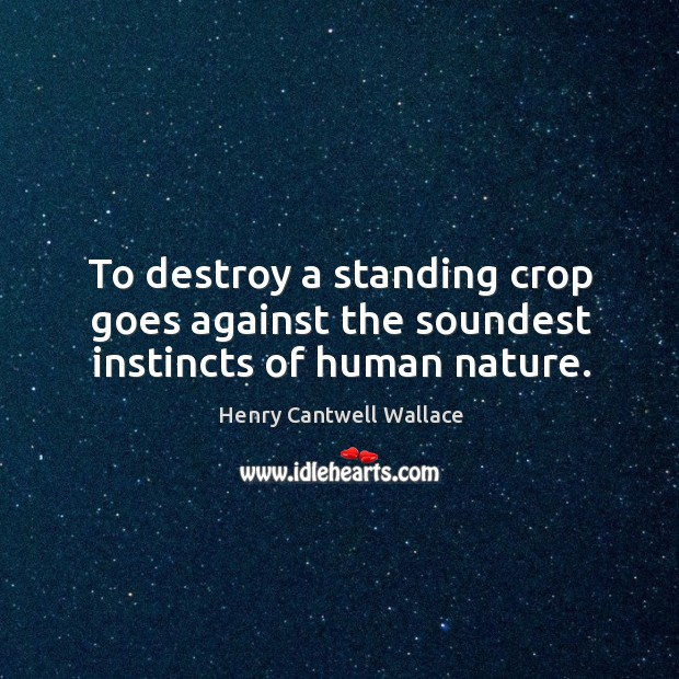 To destroy a standing crop goes against the soundest instincts of human nature. Image