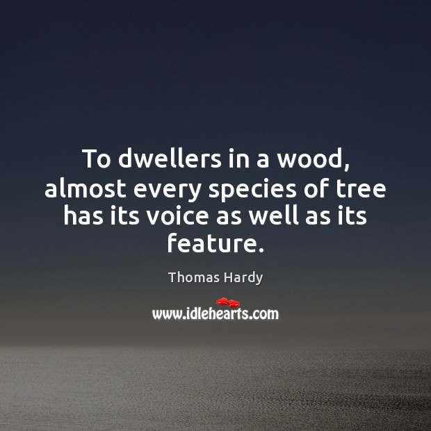 To dwellers in a wood, almost every species of tree has its voice as well as its feature. Image