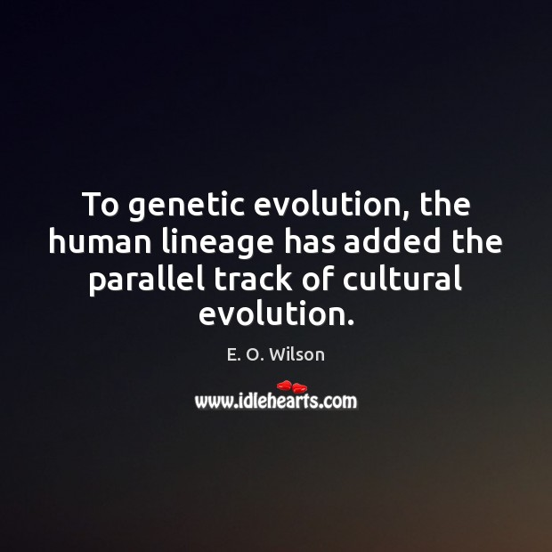 To genetic evolution, the human lineage has added the parallel track of E. O. Wilson Picture Quote