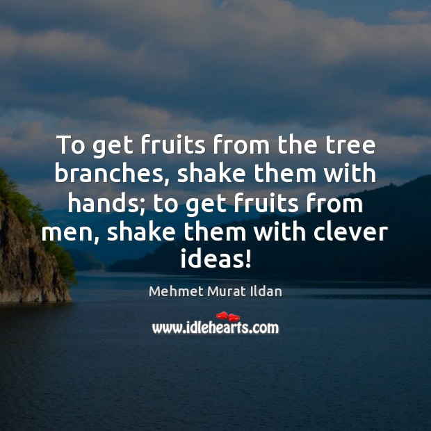 Image, To get fruits from the tree branches, shake them with hands; to