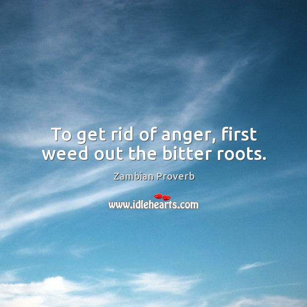 To get rid of anger, first weed out the bitter roots. Zambian Proverbs Image