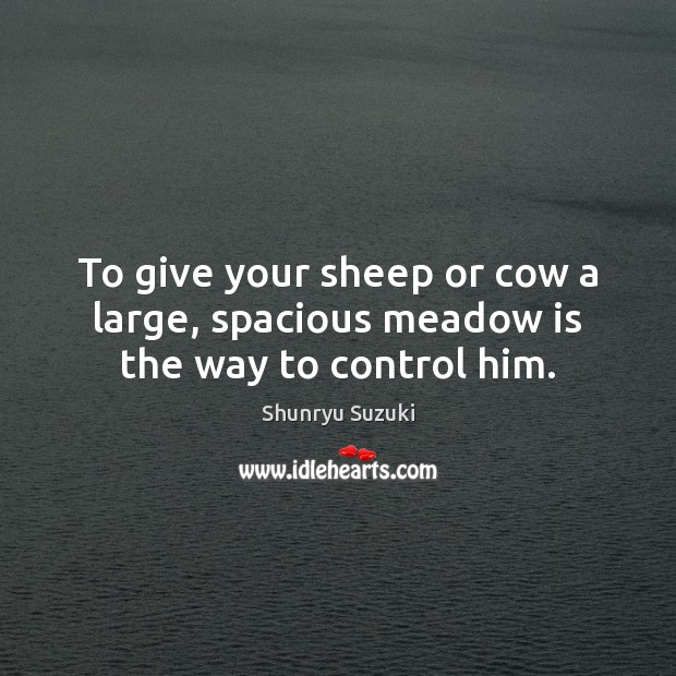 Image, To give your sheep or cow a large, spacious meadow is the way to control him.