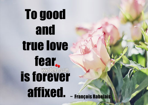 To good and true love fear is forever affixed. Fear Quotes Image