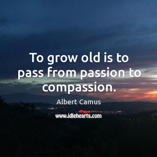 Image, To grow old is to pass from passion to compassion.
