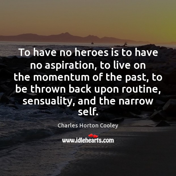 To have no heroes is to have no aspiration, to live on Image