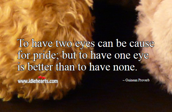 To have two eyes can be cause for pride; but to have one eye is better than to have none. Guinean Proverbs Image
