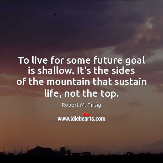 To live for some future goal is shallow. It's the sides of Robert M. Pirsig Picture Quote