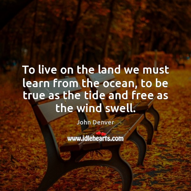 To live on the land we must learn from the ocean, to John Denver Picture Quote