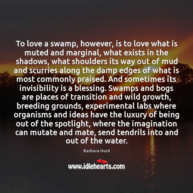 To love a swamp, however, is to love what is muted and Image