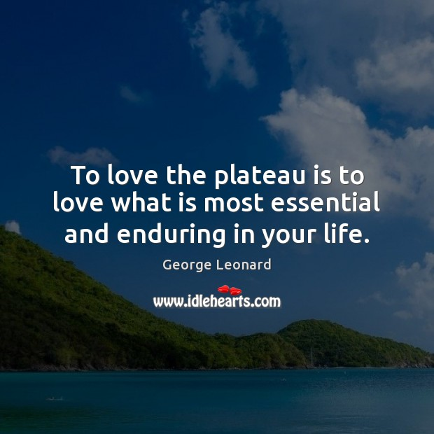 To love the plateau is to love what is most essential and enduring in your life. George Leonard Picture Quote