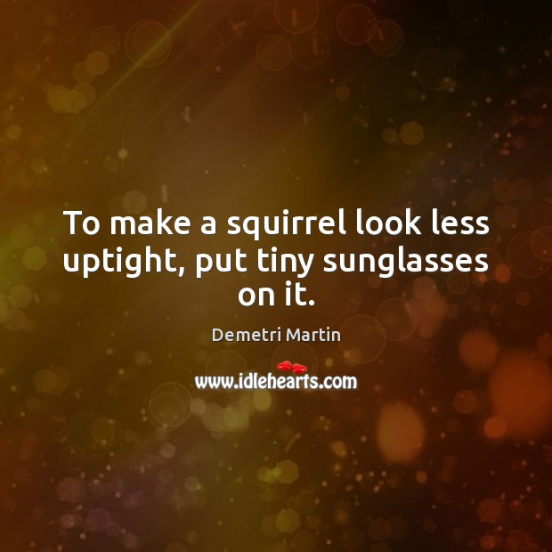To make a squirrel look less uptight, put tiny sunglasses on it. Demetri Martin Picture Quote