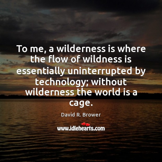 To me, a wilderness is where the flow of wildness is essentially Image