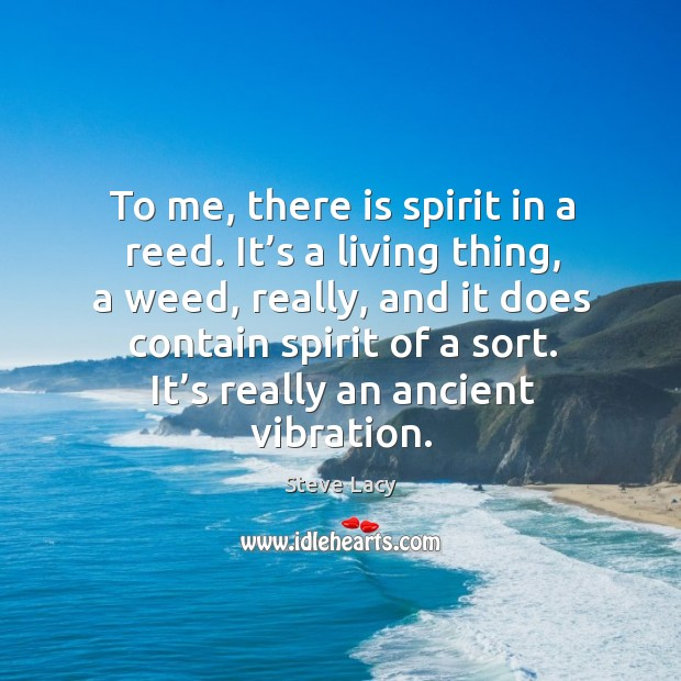 To me, there is spirit in a reed. It's a living thing, a weed, really, and it does contain spirit of a sort. Image