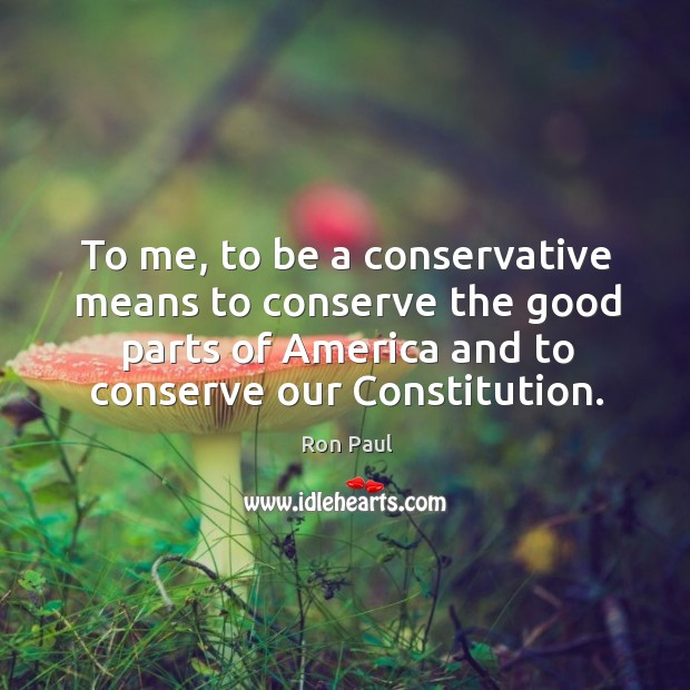 To me, to be a conservative means to conserve the good parts of america and to conserve our constitution. Image