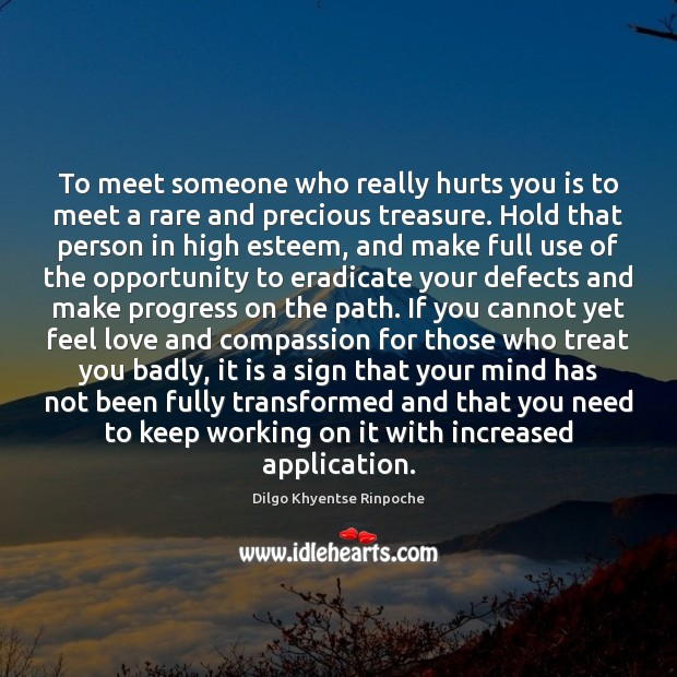 To meet someone who really hurts you is to meet a rare Dilgo Khyentse Rinpoche Picture Quote
