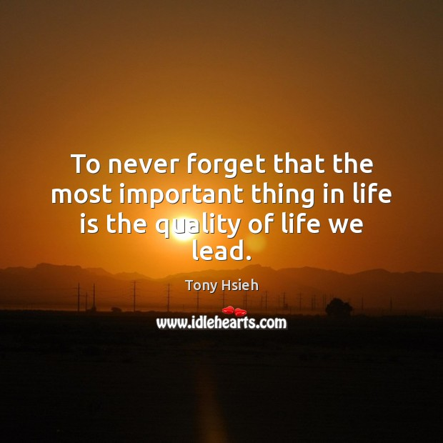 To never forget that the most important thing in life is the quality of life we lead. Tony Hsieh Picture Quote