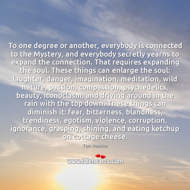 To one degree or another, everybody is connected to the Mystery, and Tom Robbins Picture Quote