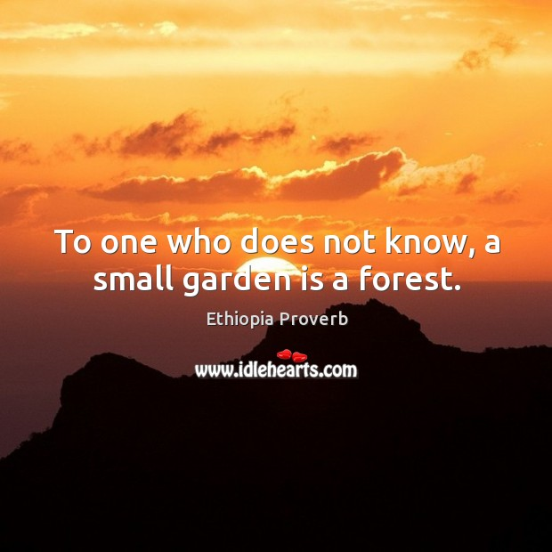 To one who does not know, a small garden is a forest. Ethiopia Proverbs Image