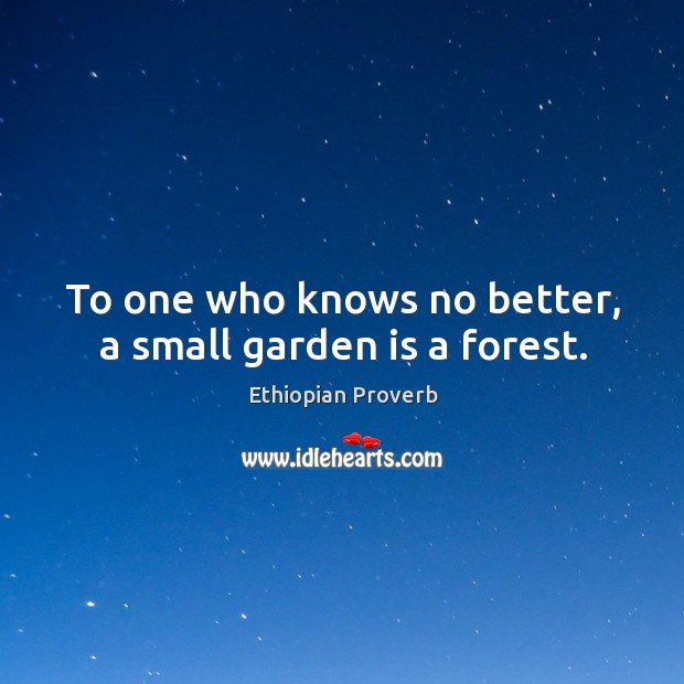 To one who knows no better, a small garden is a forest. Ethiopian Proverbs Image