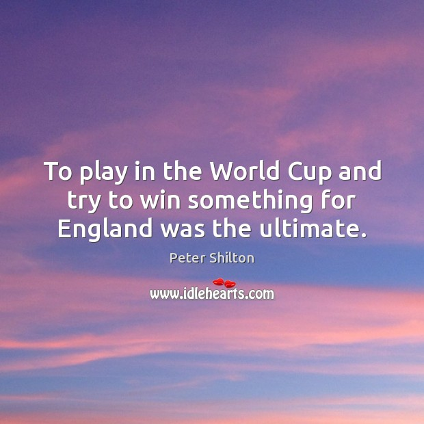 To play in the World Cup and try to win something for England was the ultimate. Image