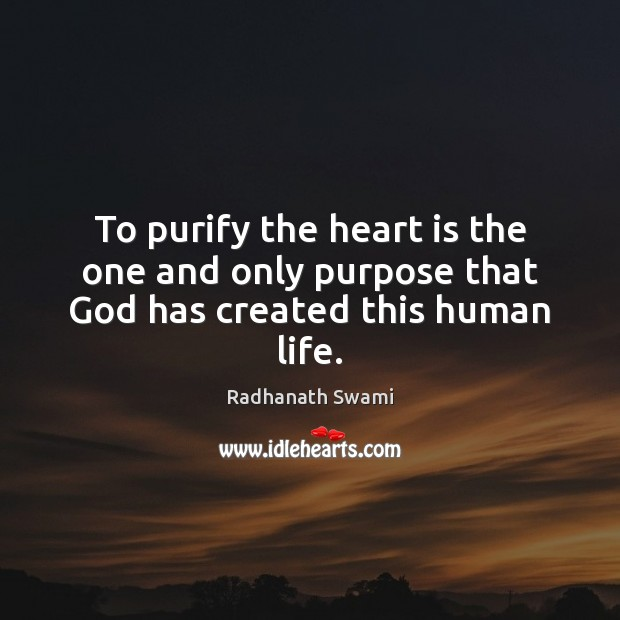 To purify the heart is the one and only purpose that God has created this human life. Radhanath Swami Picture Quote