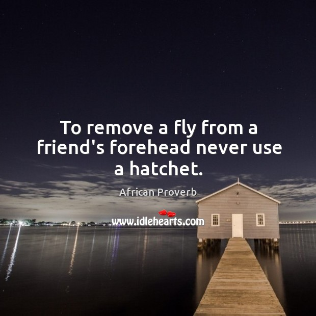 Image, To remove a fly from a friend's forehead never use a hatchet.