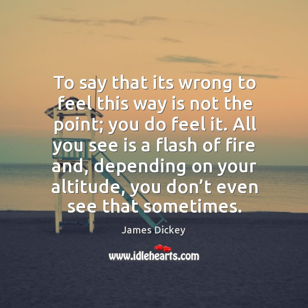 To say that its wrong to feel this way is not the point; you do feel it. James Dickey Picture Quote