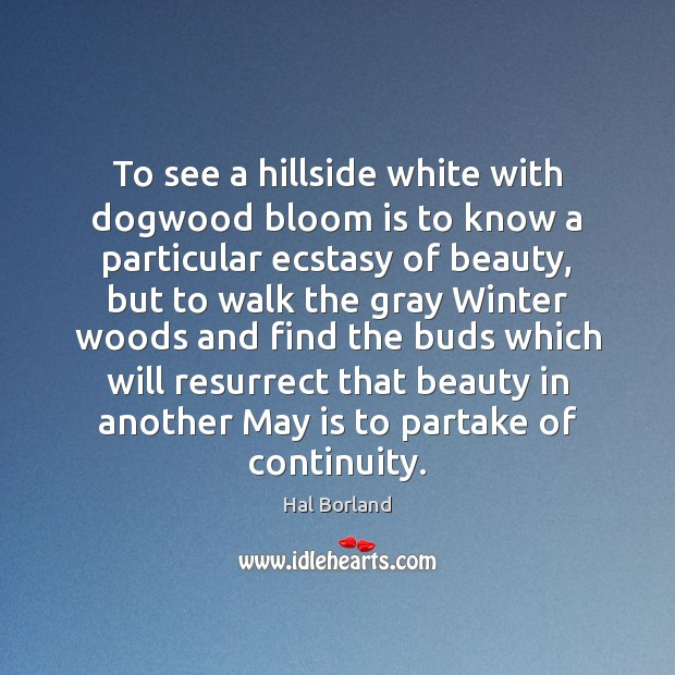 To see a hillside white with dogwood bloom is to know a Image