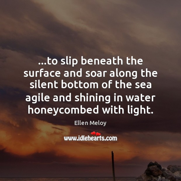 …to slip beneath the surface and soar along the silent bottom of Image