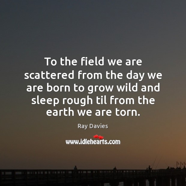 To the field we are scattered from the day we are born Image