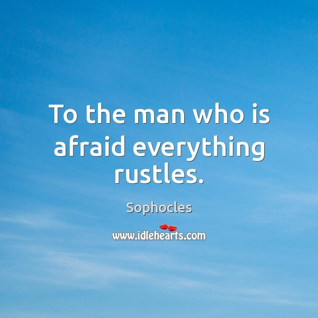 Image, To the man who is afraid everything rustles.