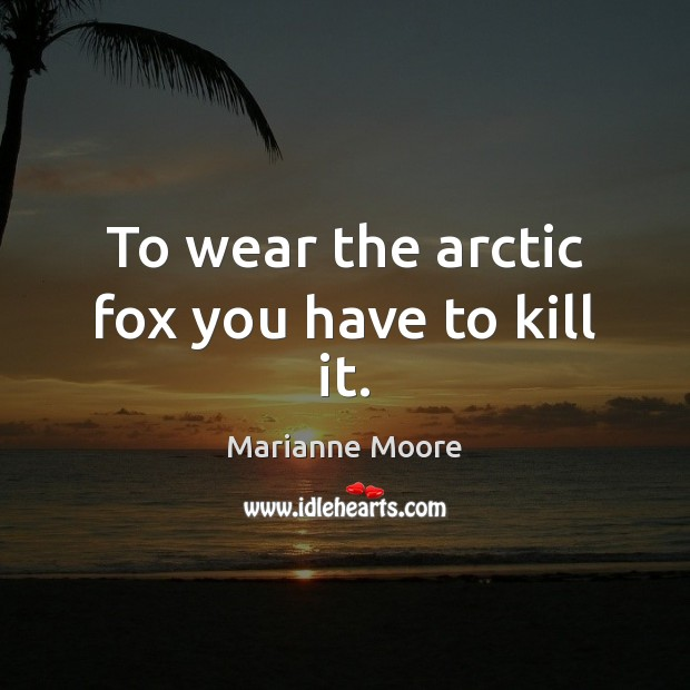Image, To wear the arctic fox you have to kill it.