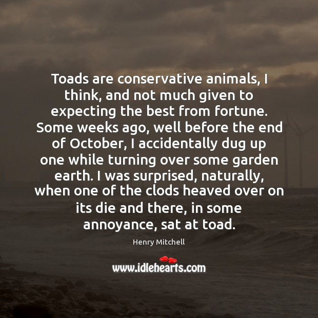 Toads are conservative animals, I think, and not much given to expecting Henry Mitchell Picture Quote