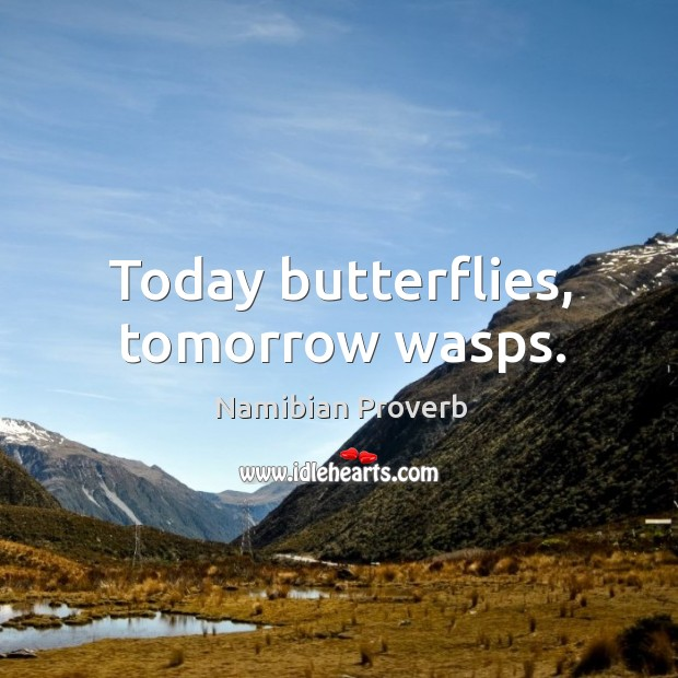 Today butterflies, tomorrow wasps. Namibian Proverbs Image