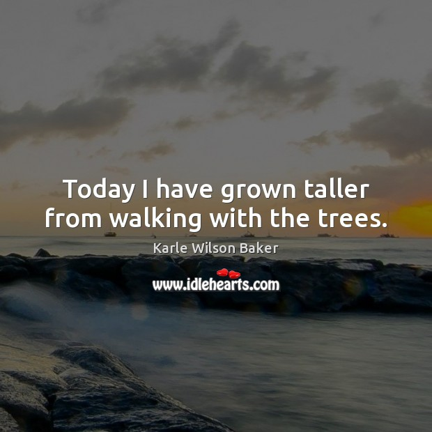 Today I have grown taller from walking with the trees. Image