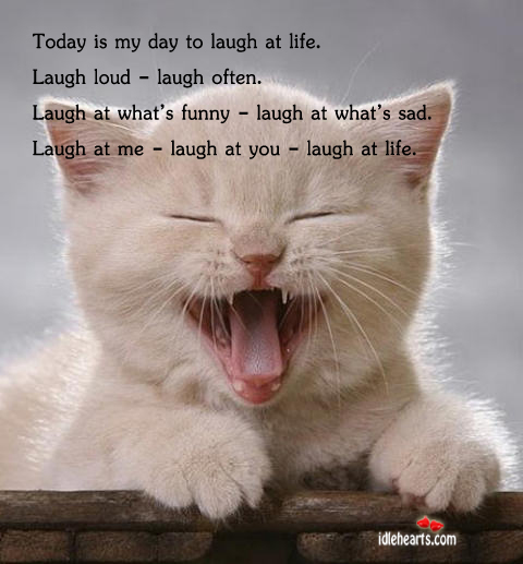 Image, Today is my day to laugh at life. Laugh loud – laugh often