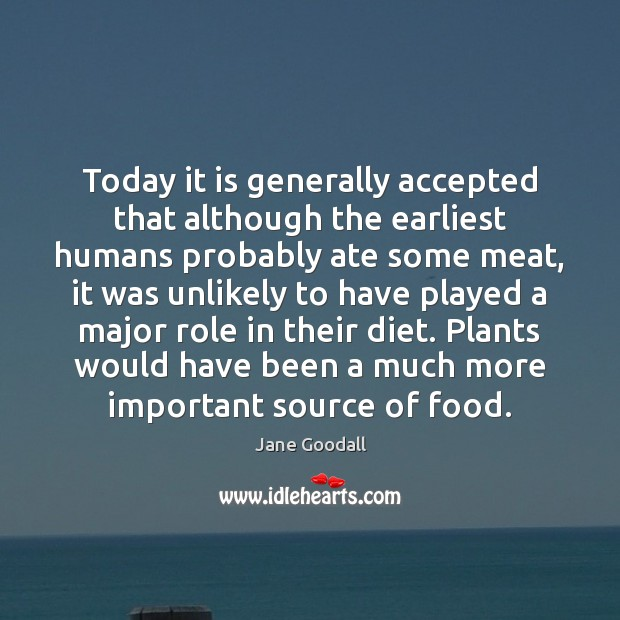 Image, Today it is generally accepted that although the earliest humans probably ate