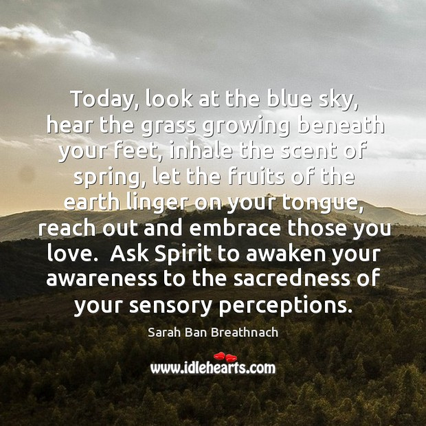 Today, look at the blue sky, hear the grass growing beneath your Image