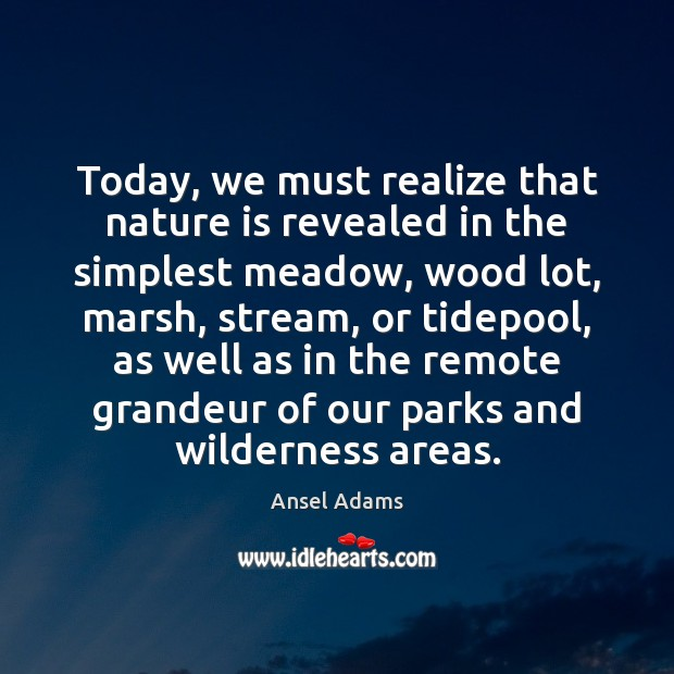 Today, we must realize that nature is revealed in the simplest meadow, Image