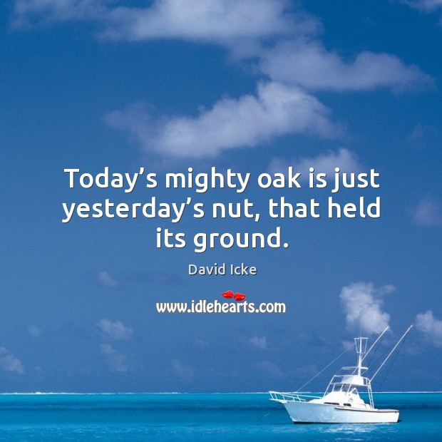 Today's mighty oak is just yesterday's nut, that held its ground. Image