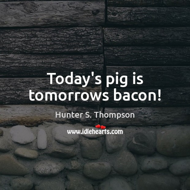 Image, Today's pig is tomorrows bacon!